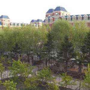 吉林财经大学-风景