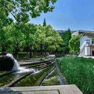同济大学-风景