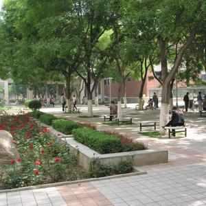西北师范大学-风景